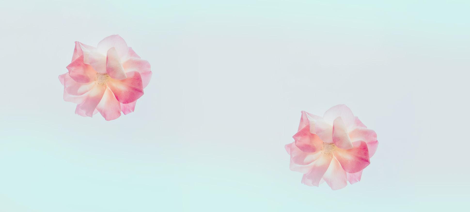 programa-basico-de-mindfulness-